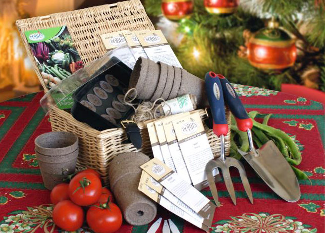 This Christmas give the gift of gardening