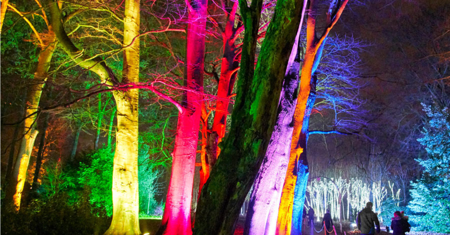 Christmas lights at Blenheim…Get ready to sparkle